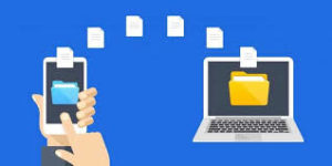 Как можно зарабатывать на файлообменниках