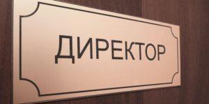 Какую зарплату получает директор школы в России