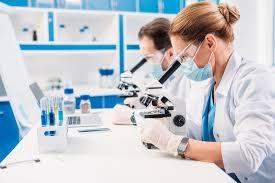 Какую зарплату получают лаборанты